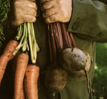 Garden Fresh vegetables What's in Season and How To Get the Best Out of Them EAT LOVE SAVOR International luxury lifestyle magazine and bookazines