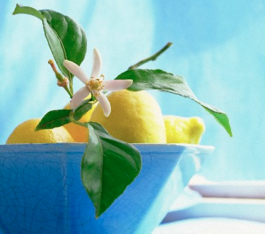 bowl of lemons green and flowers