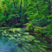 River in beech forest Bavaria Germany Reconnect with Nature: Tranquil River Beech Forest - EAT LOVE SAVOR International luxury lifestyle magazine and bookazines