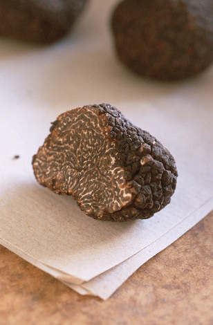 Distinguishing between Perigord Black Truffles and Chinese Black Truffles308 x 470 png 201kB