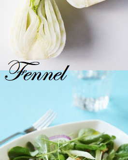 about the vegetable Fennel Discover: Fennel, a Fabulous, Age Old Vegetable EAT LOVE SAVOR International luxury lifestyle magazine and bookazines