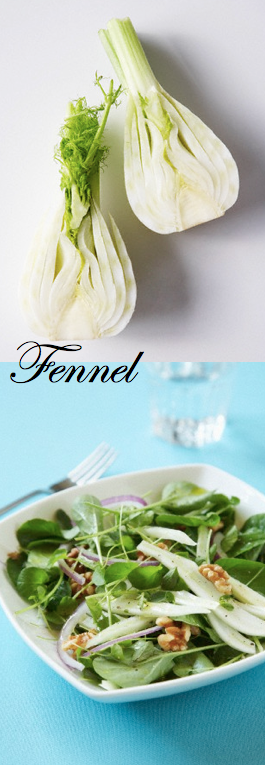 about the vegetable Fennel