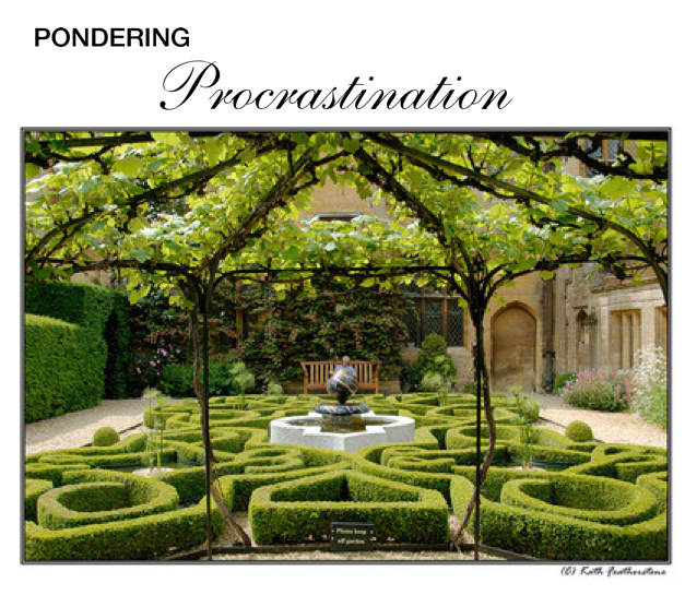 Pondering Procrastination