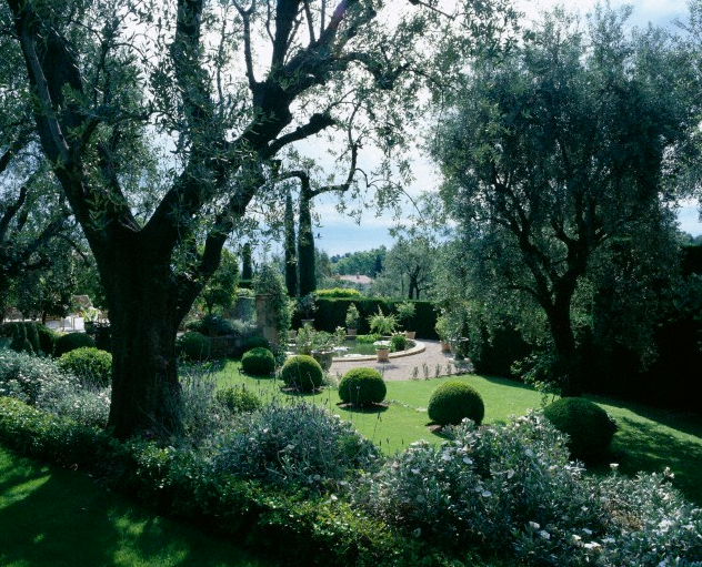 View through Olive trees to a circular Basin on terrace. La Casella, France. garden Designed by Claus Scheinert