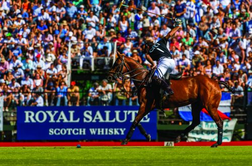 Royal Salute Polo Luxury News | POLO - World First for Argentine Open Final as Alegria is Set to Take on La Dolfina - EAT LOVE SAVOR International luxury lifestyle magazine and bookazines