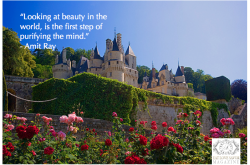 looking at beauty quote Quote: Looking At Beauty in the World - EAT LOVE SAVOR International luxury lifestyle magazine and bookazines