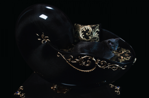 jeweled pet bed2 The Supreme Encounter Between Art Jewellery And Love For Animals: The Most Precious Cat Bed - EAT LOVE SAVOR International luxury lifestyle magazine and bookazines