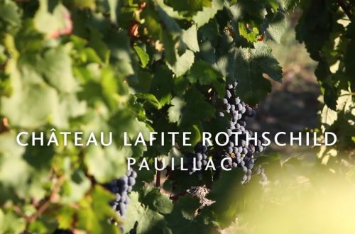 maxresdefault Wine Route - Château Lafite [video] - EAT LOVE SAVOR International luxury lifestyle magazine and bookazines
