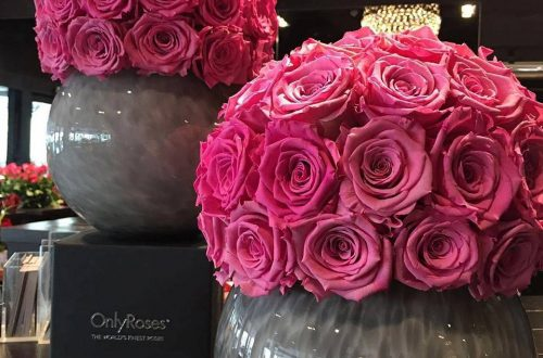 onlyroses big pink roses in vases Discover: OnlyRoses™ International Rose Specialist, home of the exclusive InfiniteRose™ - EAT LOVE SAVOR International luxury lifestyle magazine and bookazines