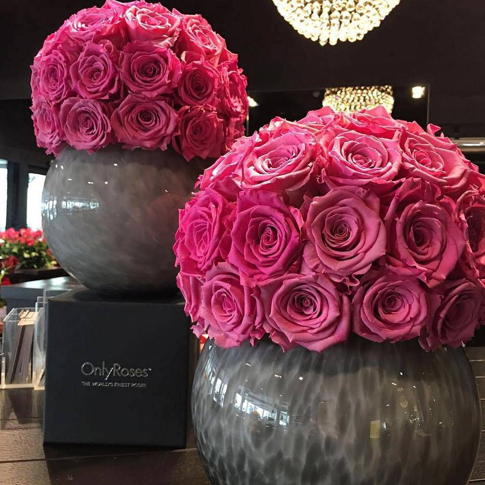 onlyroses big pink roses in vases Discover: OnlyRoses™ International Rose Specialist, home of the exclusive InfiniteRose™ EAT LOVE SAVOR International luxury lifestyle magazine and bookazines