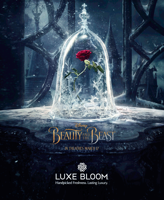 "luxebloom beauty and beast rose 25 Beautifully Preserved Roses from Luxe Bloom® Official Rose in ""Beauty and the Beast"" Film EAT LOVE SAVOR International luxury lifestyle magazine and bookazines"