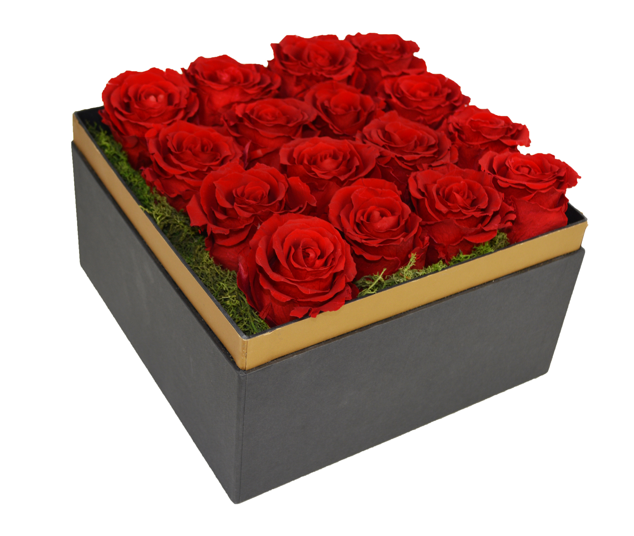 Beautifully Preserved Roses From Luxe Bloom Official Rose In Beauty And The Beast Film Eat Love Savor