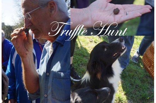 truffle hunt kime Truffle Hunting On The Périgord: The Quest For The Black Diamonds Of Cuisine EAT LOVE SAVOR International luxury lifestyle magazine and bookazines