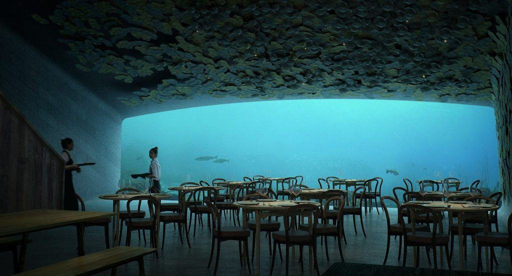 32f5cf04f78cf24b6c437a1a7d813f54 2048w The Wonder of Under: Snøhetta's First Underwater Restaurant in Europe - EAT LOVE SAVOR International luxury lifestyle magazine and bookazines