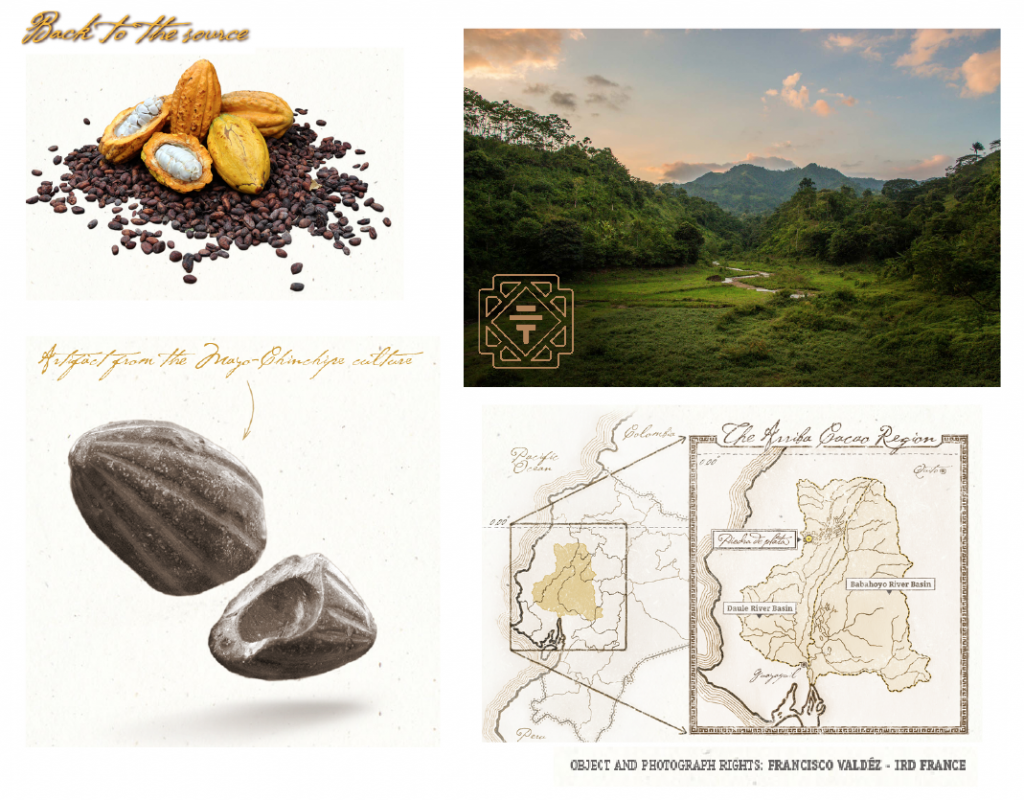 toak chocolate images Oldest and Rarest Cacao Variety on Earth Yields Two New Ground-breaking Editions by To'ak Chocolate - EAT LOVE SAVOR International luxury lifestyle magazine and bookazines